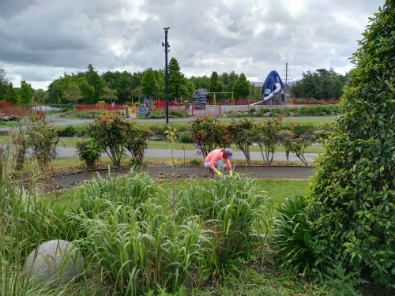 The Litter Mug team cleaning up the Sensory Garden in Sean Walsh Park in Tallaght